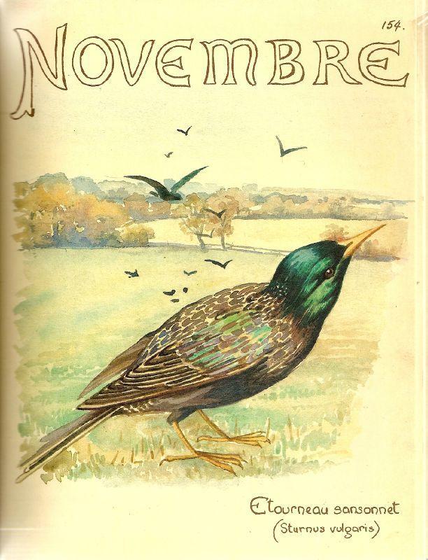 , buen mes!! noviembre… Los nombres y ocupaciones de!!