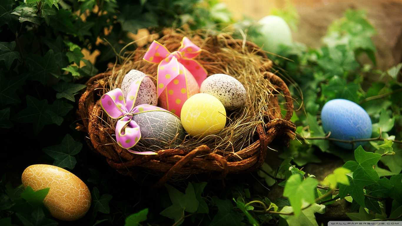 , العادات الغريبة, تسجيل المعلومات الفريدة ومضحك المعطرة عيد الفصح!!