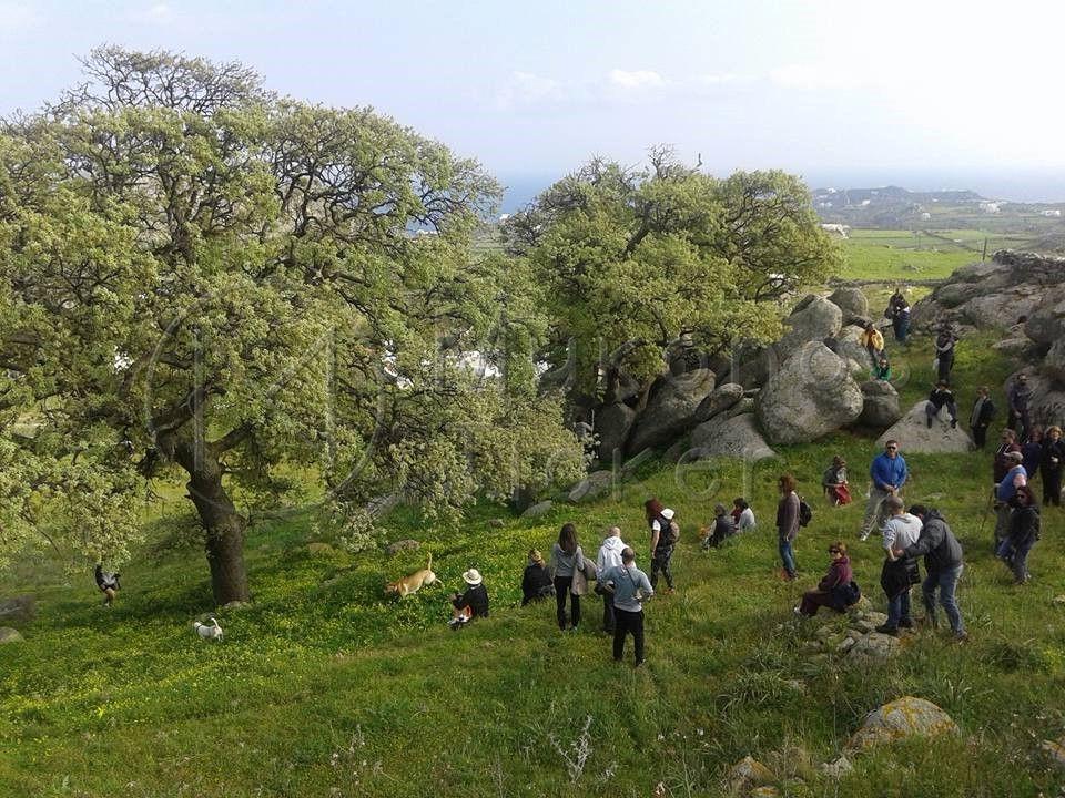 , Στο Ζάππειο Μέγαρο από 14 έως 16 Νοεμβρίου η πρώτη έκθεση για τον εναλλακτικό τουρισμό